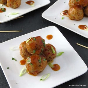 Asain Pork And Shrimp Party Meatballs | A Great Appetizer! | http://lowcarbmaven.com
