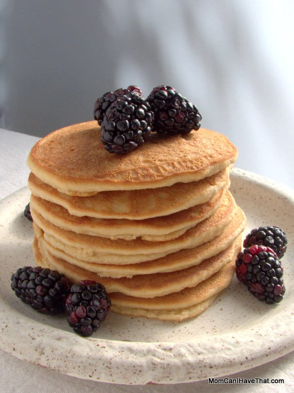 Low Carb, Big Batch Pancakes | a quick breakfast treat | LC GF DF Paleo | http://lowcarbmaven.com