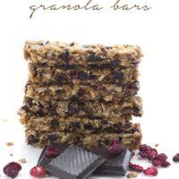 Cranberry Chocolate Chip Granola Bars